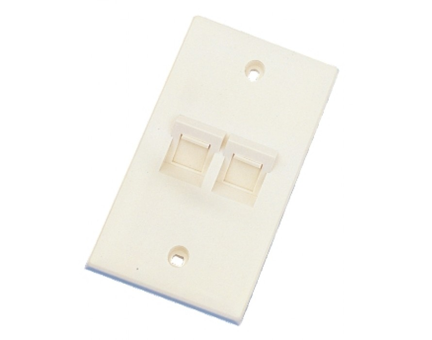 Angled 2 Ports Wall Plate 1207