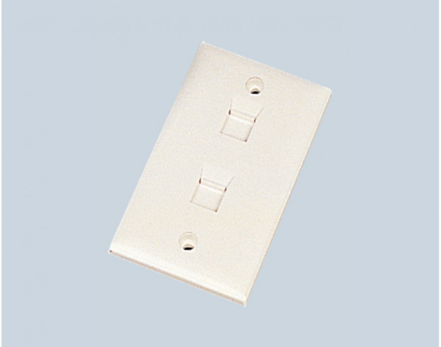 2 Ports  US wallplate